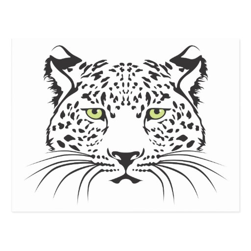 Serious Leopard Cat Post Card