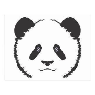 Serious Panda Bear Postcard