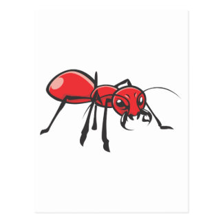 Serious Red Ant Insect Postcard