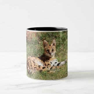 Serval Cat Mug
