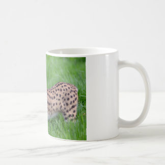 Serval in the grass coffee mugs