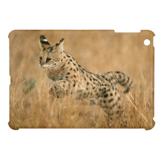 Serval (Leptailurus Serval) Jumping Cover For The iPad Mini