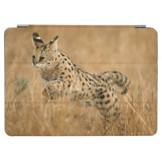 Serval (Leptailurus Serval) Jumping iPad Air Cover