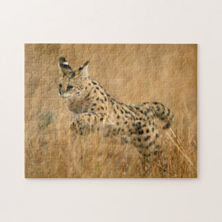 Serval (Leptailurus Serval) Jumping Jigsaw Puzzle