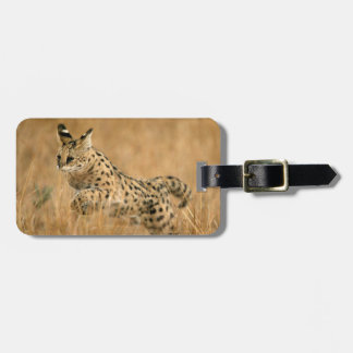 Serval (Leptailurus Serval) Jumping Luggage Tag