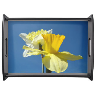 Serving Trays gifts Blue sky Yellow Daffodils