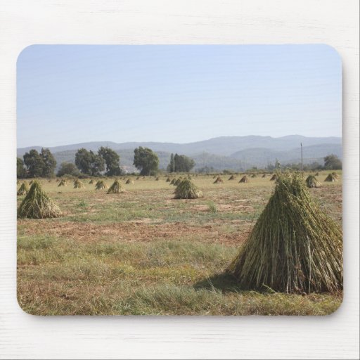 Sesame Crop and Harvest Mousepad