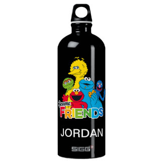 Sesame Street | Sesame Friends Water Bottle