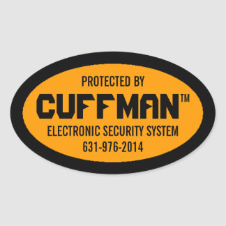 Set of 4 Electronic Security Decals Oval Sticker