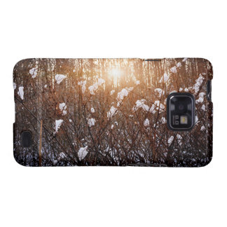 Setting sun in winter forest galaxy SII covers