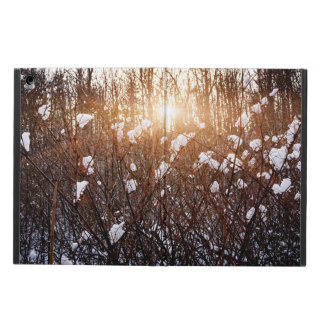 Setting sun in winter forest iPad air case