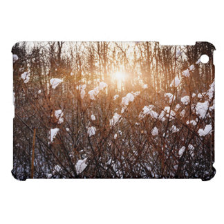 Setting sun in winter forest case for the iPad mini