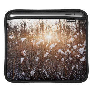 Setting sun in winter forest iPad sleeves