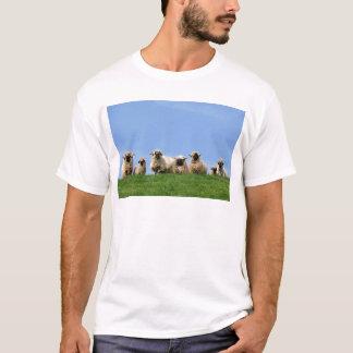 seven curious rasta sheep T-Shirt