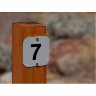 Seven Sign Standing Photo Sculpture