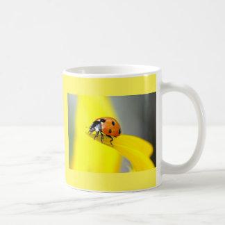 Seven Spot Ladybird Takes a Walk on a Sunflower Basic White Mug