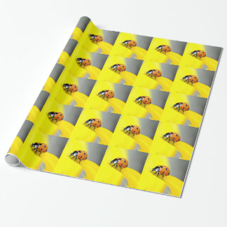 Seven Spot Ladybird Takes a Walk on a Sunflower Wrapping Paper