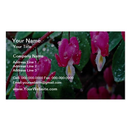 Several flowers of bleeding heart plant and water business card
