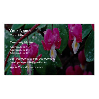 Several flowers of bleeding heart plant and water pack of standard business cards
