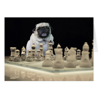 Sexy Misha pug playing chess with glasses Greeting Card