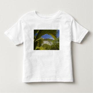 Seychelles, Curieuse Island, Laraie Bay Toddler T-Shirt