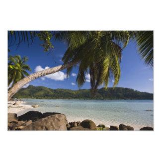 Seychelles, Mahe Island, Anse a la Mouche Photo Art