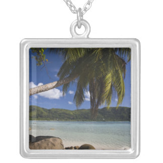 Seychelles, Mahe Island, Anse a la Mouche Silver Plated Necklace
