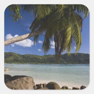 Seychelles, Mahe Island, Anse a la Mouche Square Sticker