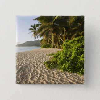 Seychelles, Mahe Island, Anse Marie-Louise 15 Cm Square Badge