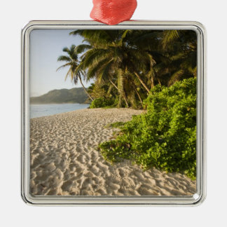 Seychelles, Mahe Island, Anse Marie-Louise Silver-Colored Square Decoration