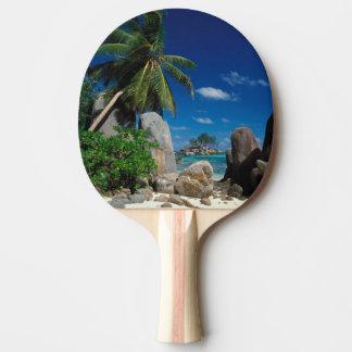 Seychelles, Mahe Island, Anse Royale Beach. Ping Pong Paddle