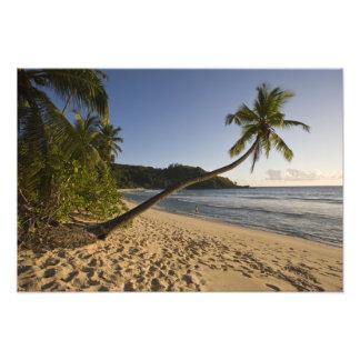 Seychelles, Mahe Island, Anse Takamaka beach, 2 Art Photo