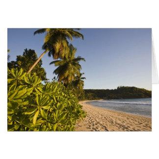 Seychelles, Mahe Island, Anse Takamaka beach, Card