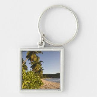 Seychelles, Mahe Island, Anse Takamaka beach, Key Ring