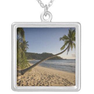 Seychelles, Mahe Island, Anse Takamaka beach, Silver Plated Necklace
