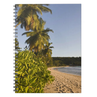Seychelles, Mahe Island, Anse Takamaka beach, Spiral Notebook