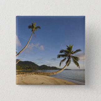 Seychelles, Mahe Island, horizontal palm, 15 Cm Square Badge