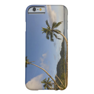 Seychelles, Mahe Island, horizontal palm, Barely There iPhone 6 Case