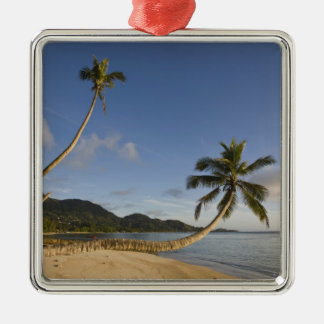 Seychelles, Mahe Island, horizontal palm, Christmas Ornament
