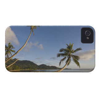 Seychelles, Mahe Island, horizontal palm, iPhone 4 Case