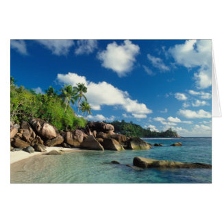 Seychelles, Mahe Island, Lazare Bay Card