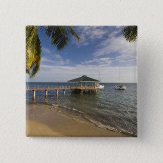 Seychelles, Praslin Island, Anse Bois de Rose, 15 Cm Square Badge