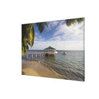 Seychelles, Praslin Island, Anse Bois de Rose, Canvas Prints