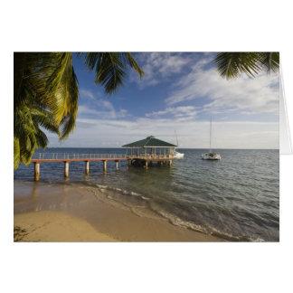 Seychelles, Praslin Island, Anse Bois de Rose, Card