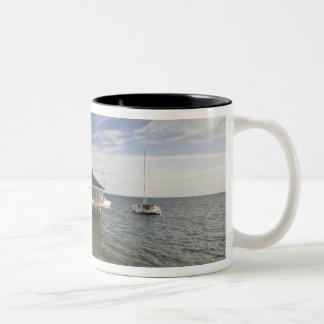 Seychelles, Praslin Island, Anse Bois de Rose, Coffee Mugs