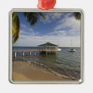 Seychelles, Praslin Island, Anse Bois de Rose, Silver-Colored Square Decoration