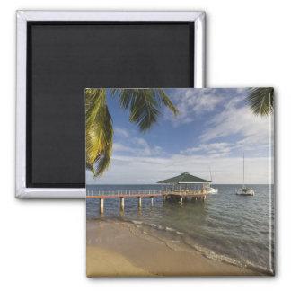 Seychelles, Praslin Island, Anse Bois de Rose, Square Magnet
