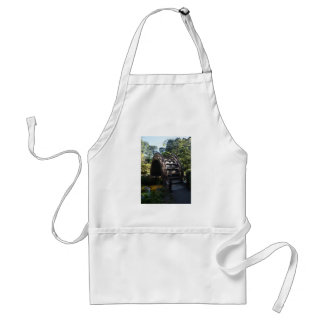 SF Japanese Tea Garden Drum Bridge Apron