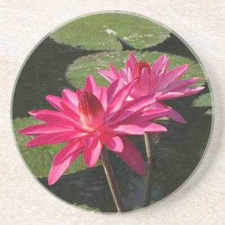 SG Double Pink water lilies coaster #2  00020