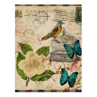 shabby elegance botanical bird french provincial postcard